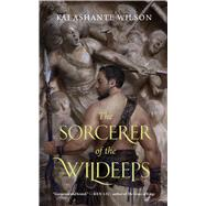 The Sorcerer of the Wildeeps by Wilson, Kai Ashante, 9780765385246