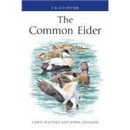 The Common Eider by Waltho, Chris; Coulson, John, 9781408125328