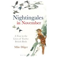 Nightingales in November A Year in the Lives of Twelve British Birds by Dilger, Mike, 9781472915351