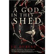 A God in the Shed by Dubeau, J. F., 9781942645351