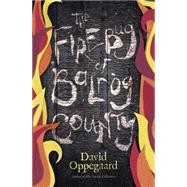 The Firebug of Balrog County by Oppegaard, David, 9780738745435