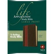 Life Application Study Bible by Not Available (NA), 9781414375441