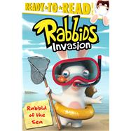 Rabbid of the Sea by Evans, Cordelia; Durk, Jim, 9781481435468