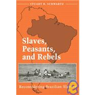 Slaves, Peasants, and Rebels : Reconsidering Brazilian Slavery
