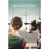 Meantime A Novel by Noel, Katharine, 9780802125491