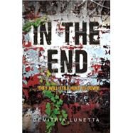 In the End by Lunetta, Demitria, 9780062105493