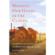 Washing Our Hands in the Clouds by Petersen, Bo, 9781611175516