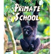 Primate School by Curtis, Jennifer Keats, 9781628555554