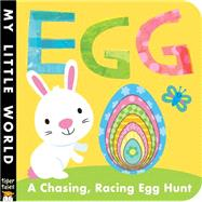 Egg: A Chasing, Racing Egg Hunt by Litton, Jonathan; Galloway, Fhiona, 9781589255562
