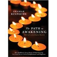 The Path to Awakening by Rinpoche, Shamar; Braitstein, Lara, 9781883285593