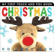 Christmas Holiday Fun by Litton, Jonathan, 9781589255623
