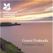 Gower Peninsula by Gogerty, Clare, 9781843595656