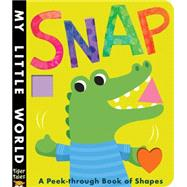 Snap: A Peek-through Book of Shapes by Litton, Jonathan; Galloway, Fhiona, 9781589255661