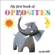 My First Book of Opposites by Grée, Alain, 9781908985675