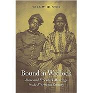 Bound in Wedlock by Hunter, Tera W., 9780674045712