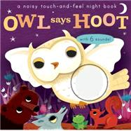 Noisy Touch and Feel: Owl Says Hoot by Walden, Libby; Enright, Amanda, 9781626865761