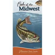 Fish of the Midwest by Bosanko,  Dave, 9781591935834