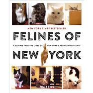 Felines of New York A Glimpse Into the Lives of New York's Feline Inhabitants by Tews, Jim, 9781501125836