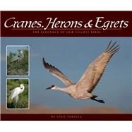 Cranes, Herons & Egrets The Elegance of Our Tallest Birds by Tekiela, Stan, 9781591935841
