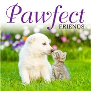 Pawfect Friends by Unknown, 9781782745860