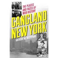 Gangland New York: The Places and Faces of Mob History by DeStefano, Anthony, 9781493006007