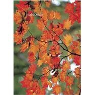 Autumn Leaf by Peony Press, 9780754826019