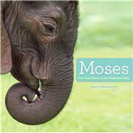 Moses The True Story of an Elephant Baby by Perepeczko, Jenny; Perepeczko, Jenny, 9781442496033
