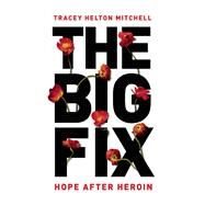 The Big Fix by Helton Mitchell, Tracey, 9781580056038
