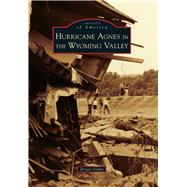 Hurricane Agnes in the Wyoming Valley by Glahn, Bryan, 9781467126052