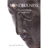 Mindfulness by Goldstein, Joseph, 9781622036059