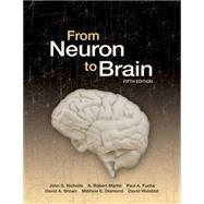 From Neuron to Brain by Nicholls, John G., 9780878936090