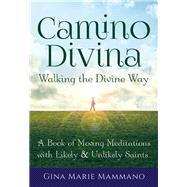 Camino Divina - Walking the Divine Way by Mammano, Gina Marie, 9781594736162