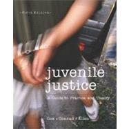 Juvenile Justice : A Guide to Practice and Theory by Cox, Steven M.; Conrad, John J.; Allen, Jennifer M., 9780697356178