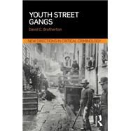 Youth Street Gangs: A critical appraisal by Brotherton; David C., 9780415856294