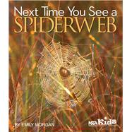 Next Time You See a Spiderweb by Morgan, Emily, 9781938946349