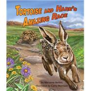 The Tortoise and Hare's Amazing Race by Berkes, Marianne; Morrison, Cathy, 9781628556353
