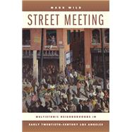 Street Meeting by Wild, Mark, 9780520256354