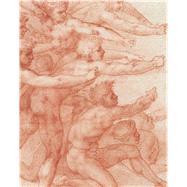 Michelangelo by Bambach, Carmen C.; Barry, Claire (CON); Caglioti, Francesco (CON); Cuperi, Walter (CON); Elam, Caroline (CON), 9781588396372