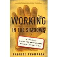 Working in the Shadows : A Year of Doing the Jobs (Most) Americans Won't Do by Thompson, Gabriel, 9781568586380