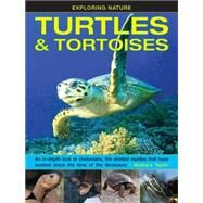 Turtles & Tortoises by Taylor, Barbara, 9781861476432