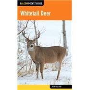 Whitetail Deer by Ballard, Jack, 9781493026456