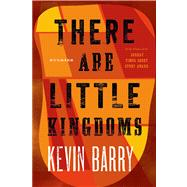 There Are Little Kingdoms Stories by Barry, Kevin, 9781555976521
