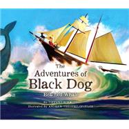 The Adventures of Black Dog: Beached Whale by Schmidt, Tiffany; Theophilopoulos, Andrew, 9780996066617