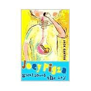 Joey Pigza Swallowed the Key by Gantos, 9780374336646