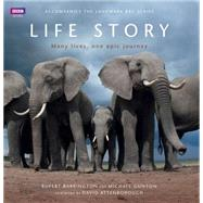 Life Story: Many Lives, One Epic Journey by Barrington, Rupert; Gunton, Michael; Barton, Miles (CON); Gray, Ian (CON); Hugh-Jones, Tom (CON), 9781849906647