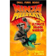 Ninja Meerkats (#7) The Ultimate Dragon Warrior by Jones, Gareth P.; Finlayson, Luke, 9781250046659
