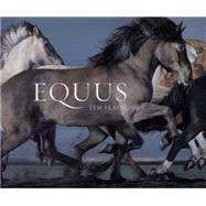 Equus (Mini) by Flach, Tim, 9781419716683