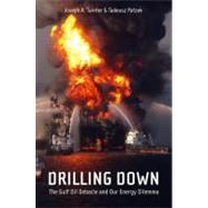 Drilling Down : The Gulf Oil Debacle and Our Energy Dilemma by Patzek, Tadeusz W., 9781441976765