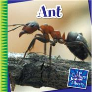 Ant by Gray, Susan Heinrichs, 9781633626782