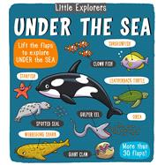 Little Explorers Under the Sea by Little Bee Books, 9781499806953
